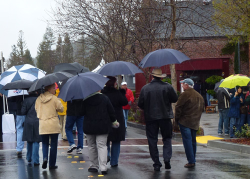 Taste of Yountville - Umbrellas in the Rain